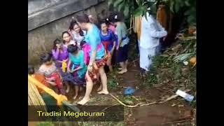 Tradisi unik Bali kalah di Telanjangi perempuan...