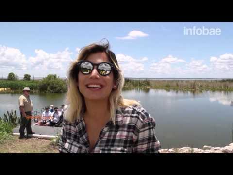 Lago Apopka: un paraíso a minutos de Orlando