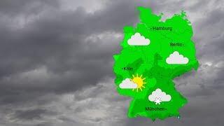 Trüb und ein wenig Regen (25.03.2019)