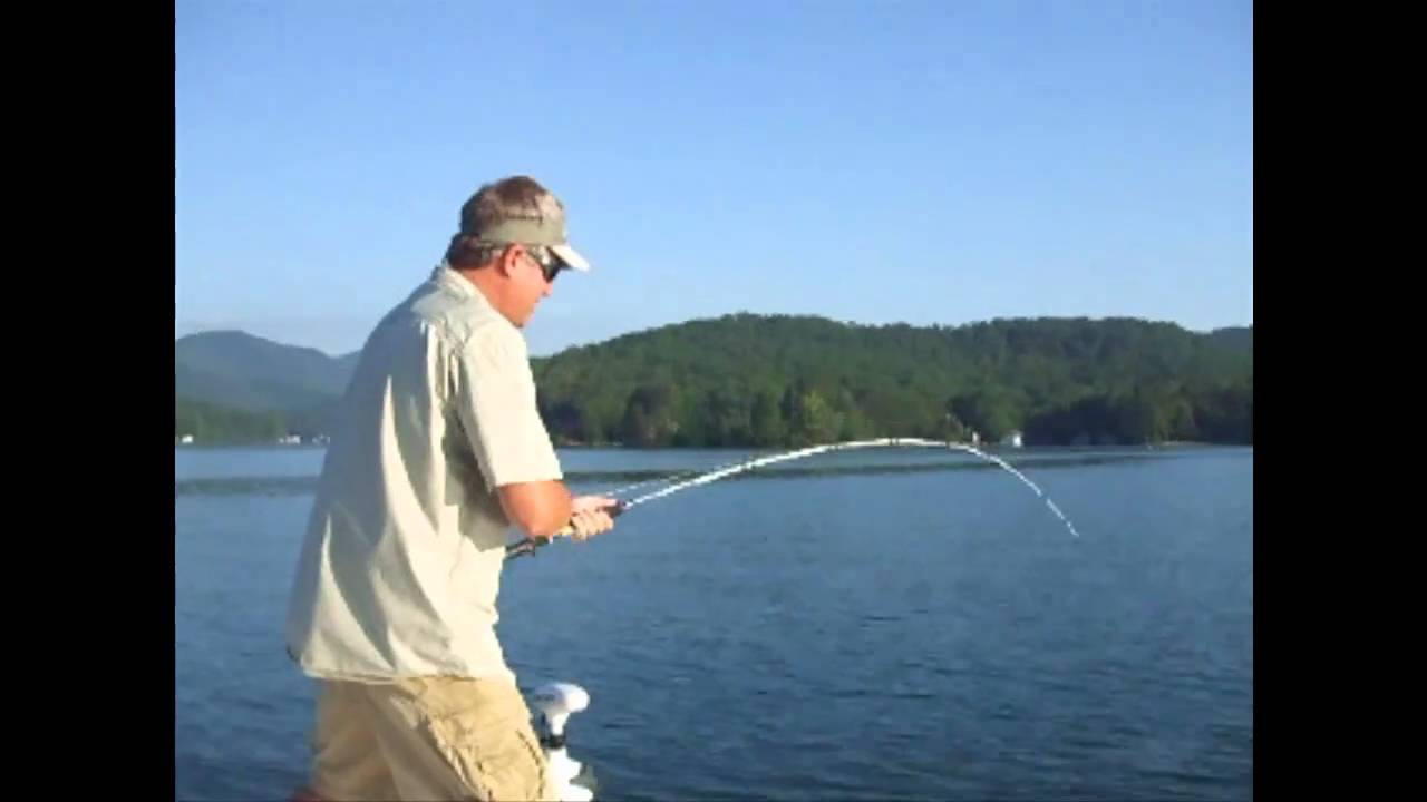 Lake burton lake lanier fishing youtube for Lake lanier fishing