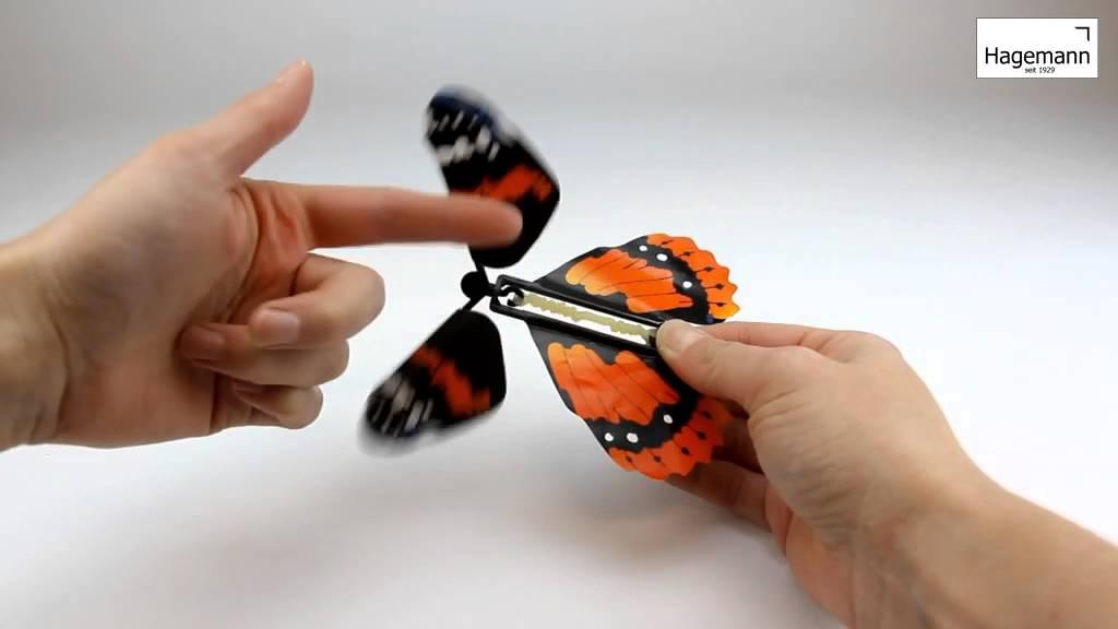 Lassen schmetterling fliegen Schmetterlinge by