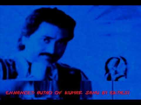 Tu Kaun Hai Tera Naam Kya Kumar Sanu w Sadhna S enhanced version