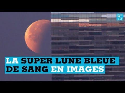 """De Los Angeles à Tokyo s'est levée une """"super Lune bleue de sang"""""""