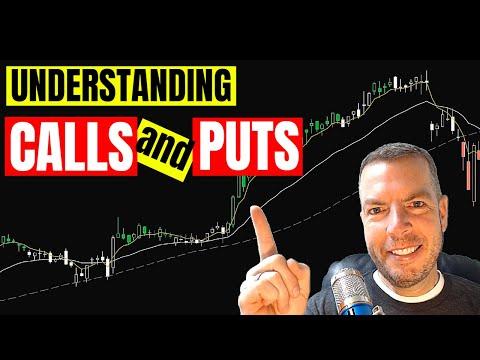 Understanding CALLS and PUTS  📈