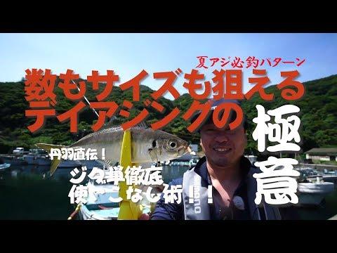【アジング】日中に良型アジが爆釣!
