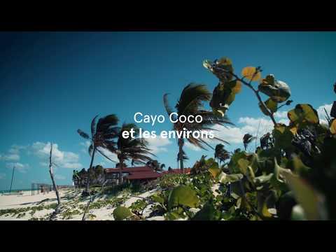 Cayo Coco Et Les Environs à Cuba