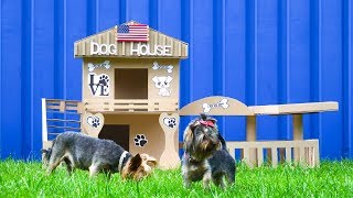 DIY Amazing Dog House for Two Beautiful Puppies