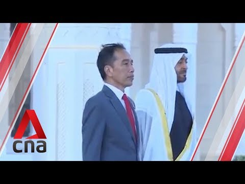 Indonesia, UAE sign investment deals worth US$23b