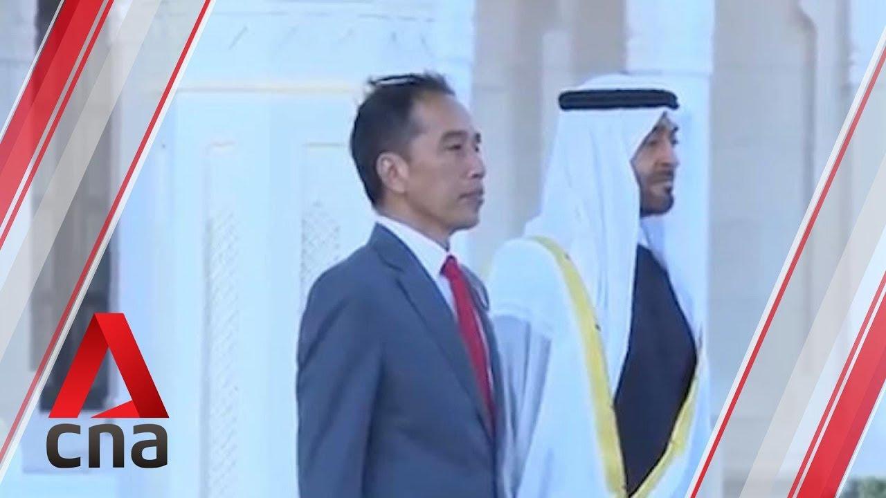 Indonesia UAE Investments
