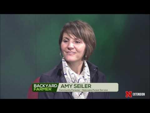 Backyard Farmer Presents: Lifestyle Gardening 405