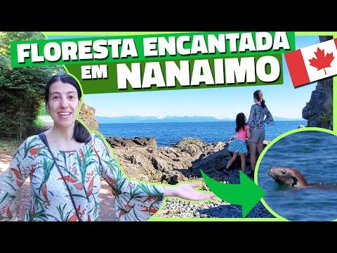 TOUR PELA CIDADE DE NANAIMO NO CANADÁ (E MUITO MAIS!) - HORNBY ISLAND #6 - Vlog Ep.143