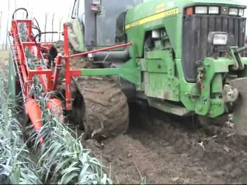 leek and celery harvester LAUWERS