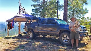 Minimalist Tacoma Stealth Truck Camping with a Blind Dog