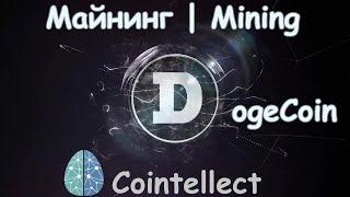 Dogecoin майнинг Cointellect