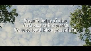 Download lagu Gabi Ilut - La umbra aripilor Tale