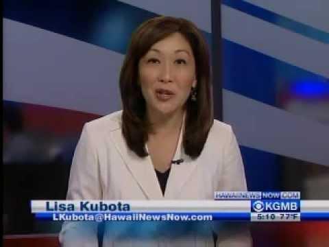 """""""Easy Swatter"""" in Honolulu TV News.wmv"""