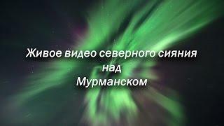 Живое видео северного сияния над Мурманском. Realtime aurora(, 2016-10-03T17:26:56.000Z)