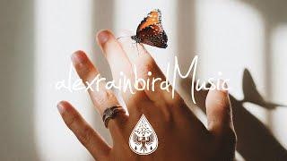 MacKenzie Bourg - Butterflies