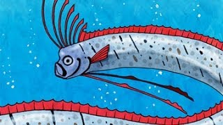 Wild & Weird: the Oarfish Song