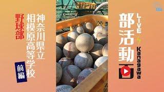 部活動画「神奈川県立相模原高等学校 野球部」前編 2019/03/04 Mon.