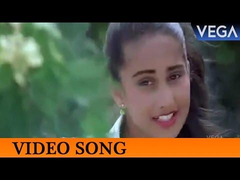 Minnal Kaivala Video Song || Harikrishnans...