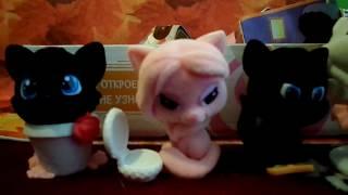 Обзор на полную коллекцию Sweet BOX часть 3 ПУШИСТИКИ Котята