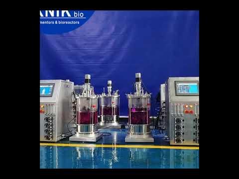 China stainless steel bioreactors fermenters CGMP machine