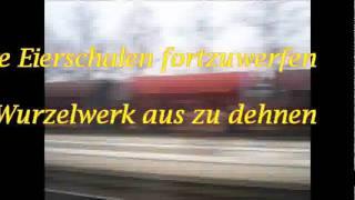 Fernweh / der Prophet -Schiller
