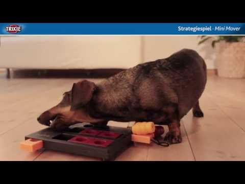 TRIXIE Heimtierbedarf - Dog Activity Strategiespiel Mini Mover