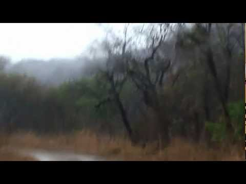 good weather in africa (Zimbabwe)