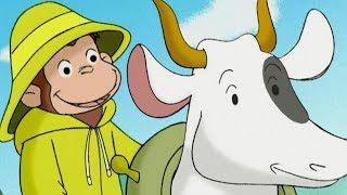 Curious George 🐵The Dam Builder 🐵 Kids Cartoon 🐵 Kids Movies 🐵Videos for Kids