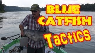 A good place to find BIG catfish in rivers: Current Seams