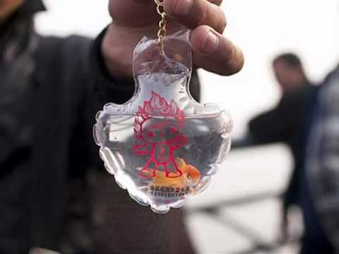 Turtles and Fish in keychains! ~ Animal Cruelty - YouTube 0189044f9da8