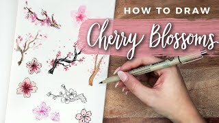 Baixar How to Draw Cherry Blossom Flowers! | DOODLE WITH ME + Tutorial!