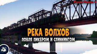 Рыбалка на реке Волхов Пикер и фидер Driler Русская Рыбалка 4