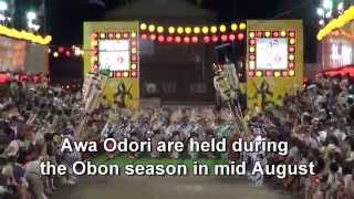 japan trip tokushima city awa odori visitor from around the world naruto city shikoku