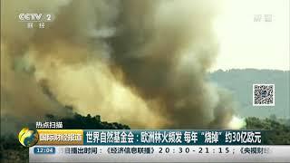"""[国际财经报道]热点扫描 世界自然基金会:欧洲林火频发 每年""""烧掉""""约30亿欧元  CCTV财经"""