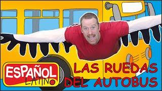 Las Ruedas del Autobús con Steve and Maggie Español Latino | Canciones Infantiles