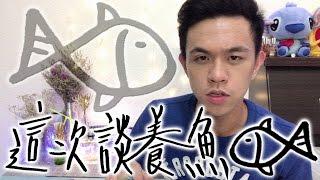 如何第一次養魚就上手(魚很難養!?)(真的嗎)∥ Mr.小狼