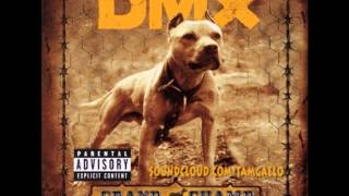 DMX - Dog Intro (Instrumental)