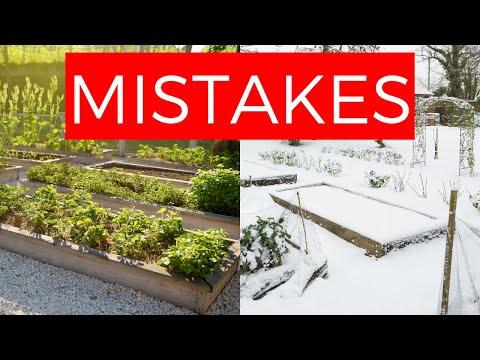 AVOID These 5 Veggie Gardening Mistakes ❌😲❌