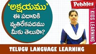 Teta Telugu Telugu Opposites