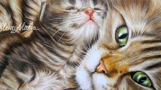 Realistic colored pencil drawing cat - TimeLapse (Рисунок цветными карандашами кошка и котенок)