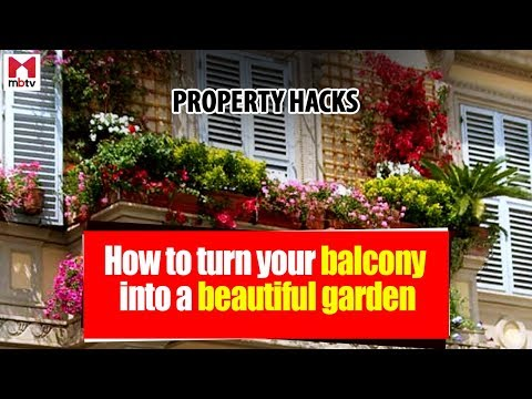 How to create a terrace garden in your balcony  S01E04