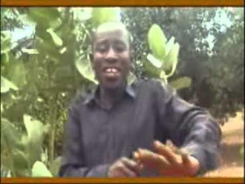 Oheneba E K