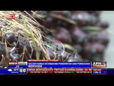 Biofuel 15 Persen Berlaku Efektif 1 April 2015