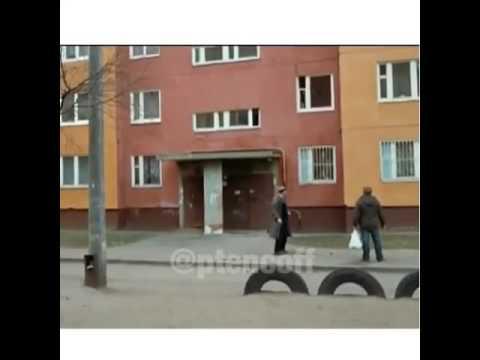 Арбузный переулок - читать сказку онлайн - Драгунский В. Ю