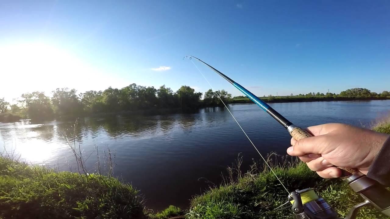 запреты ловли на москве реке