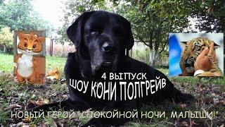 Кони Полгрейв Шоу - 4 выпуск