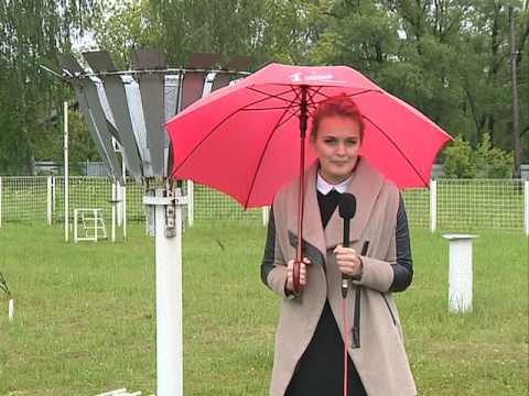 Когда поменяется погода в Ярославле